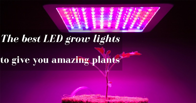 The Best Led Grow Lights To Give You Amazing Plants