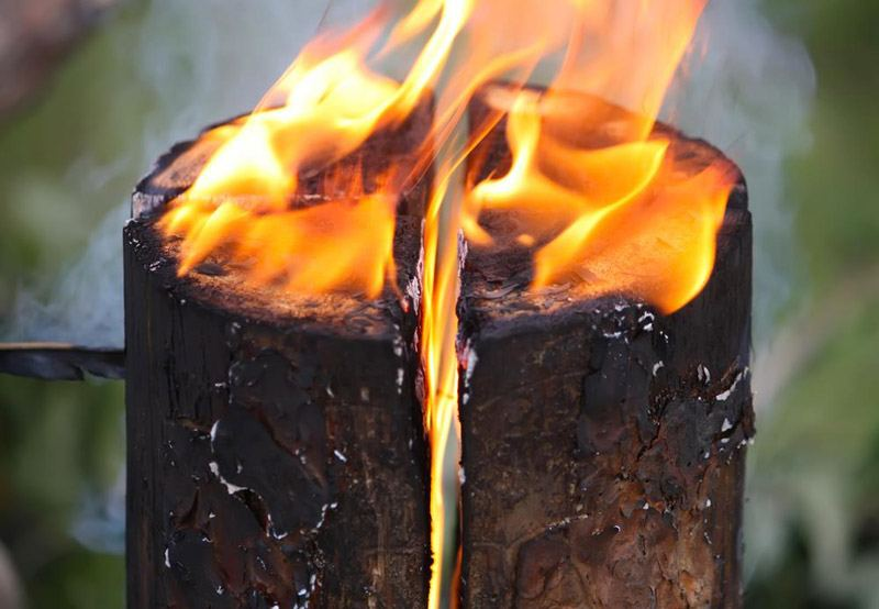 Kill tree stump with fire