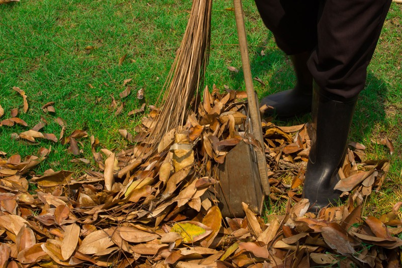 gardener sweeping-leaves on the floor in the garden