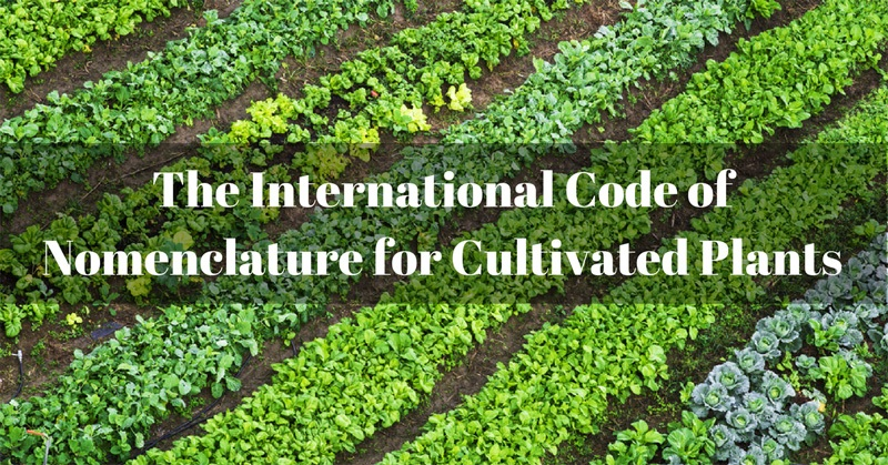 The International Code of Nomenclature for Cultivated Plants