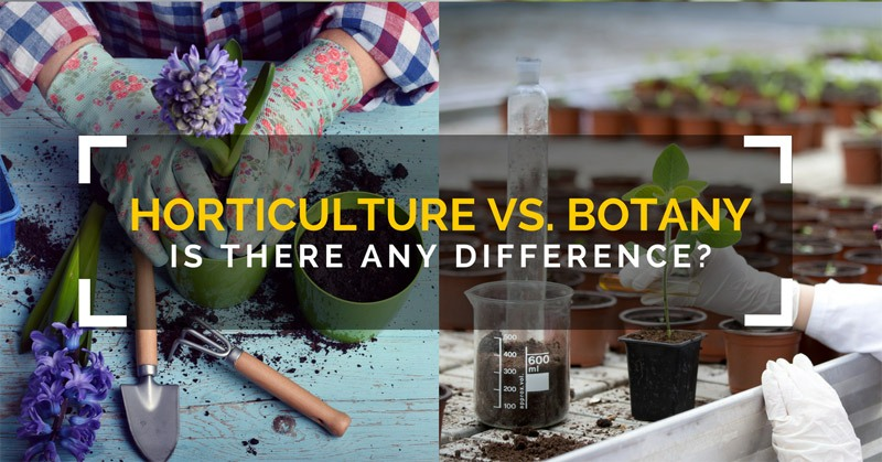 Horticulture vs. Botany