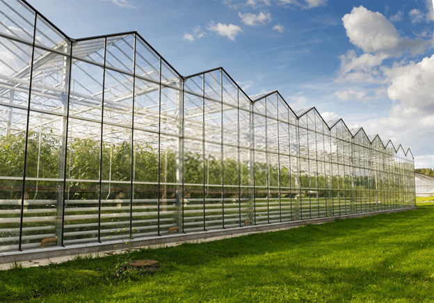 roof greenhouse design