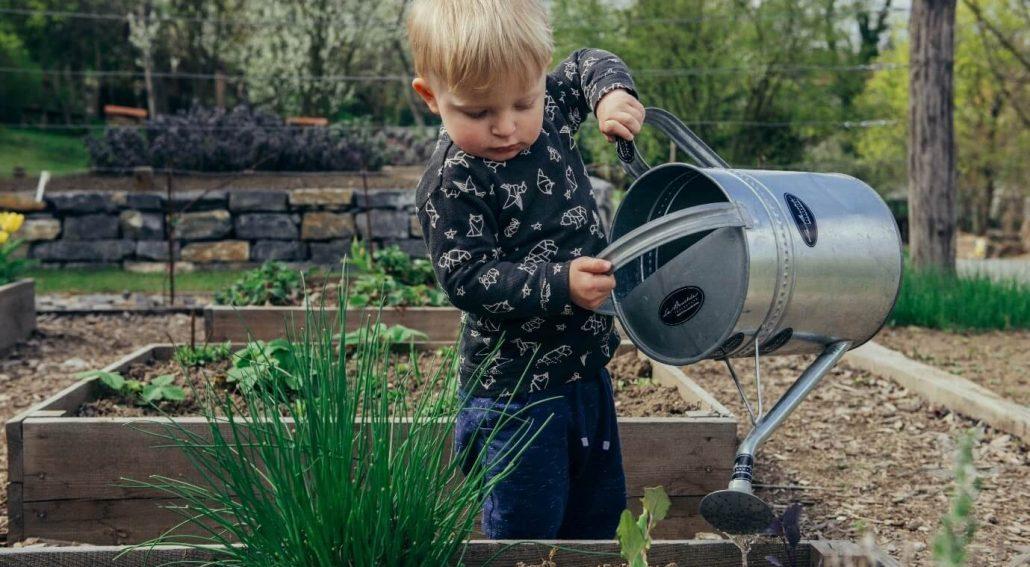 Involve your Kids in Gardening